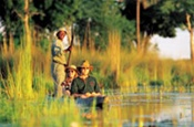 Mekoro trips in the Okavango Delta